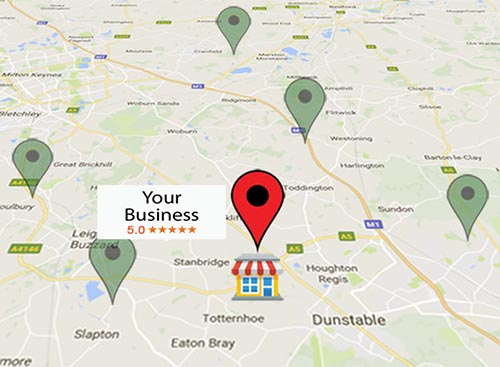 local seo services for business startups